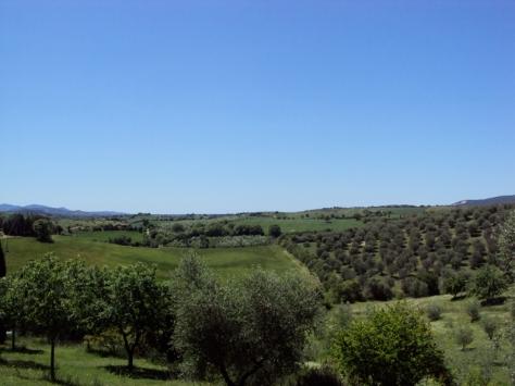 Maremma - Panorama dalla casa di Valeria Rossi