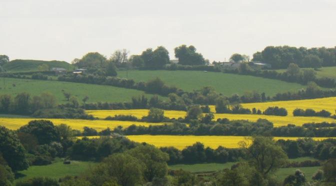 07.2 Dublino | Newgrange, Monasterboyce e la valle del Boyne