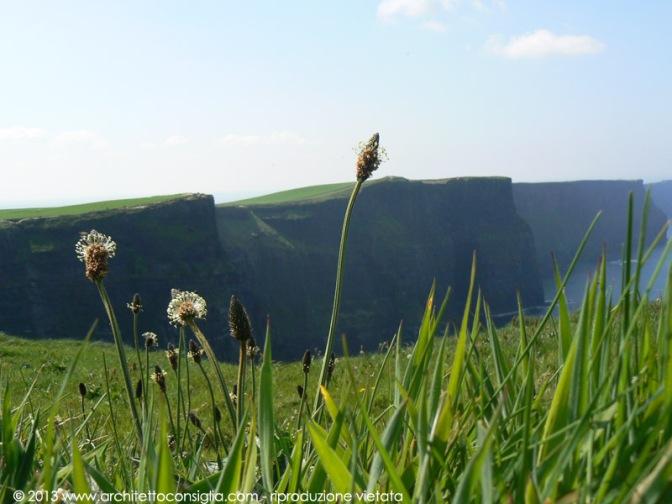 11 Dublino | Scogliere di Moher e Paesaggio Lunare di Burren
