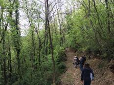 camminata Lusuolo - Campoli