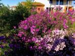 Casa Giovanna ed Ermes - giardino 12