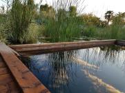 Casa Giovanna ed Ermes - giardino 9
